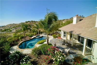 Temecula Single Family Home For Sale: 40011 Via View