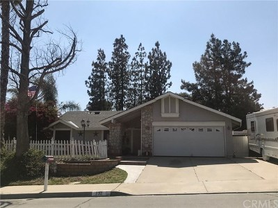 Lake Elsinore Single Family Home For Sale: 232 Ohio Street