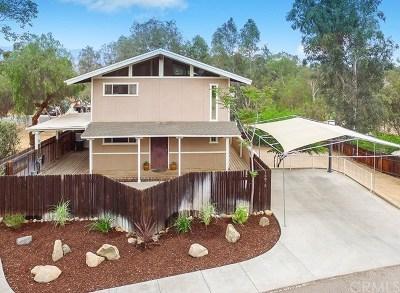 Lake Elsinore Single Family Home For Sale: 16875 Sannelle Street