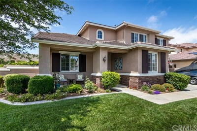 Murrieta Single Family Home For Sale: 23244 Clear Creek Street
