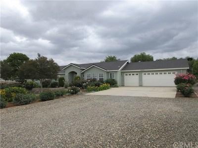 Menifee Single Family Home For Sale: 25815 Floyd