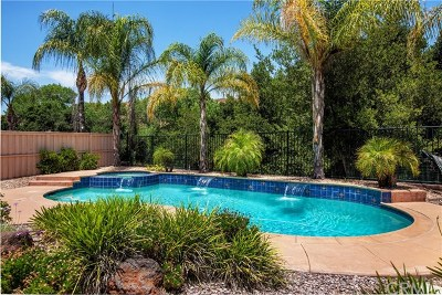 Lake Elsinore Single Family Home For Sale: 32514 Sprucewood Way