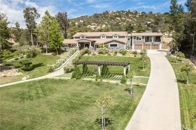 Murrieta Single Family Home For Sale: 38596 Avenida Bonita