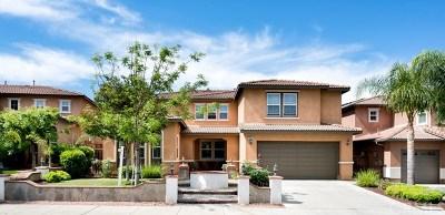 Murrieta Single Family Home For Sale: 29307 Gandolf Court