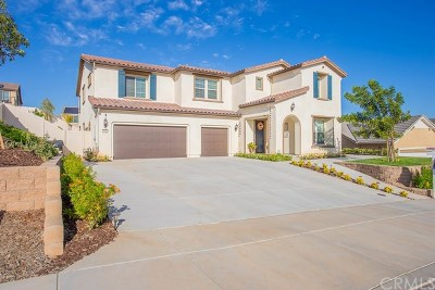 Murrieta Single Family Home For Sale: 37814 Kingbird Place