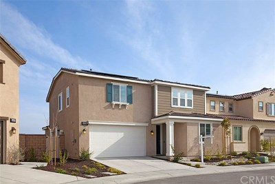 Lake Elsinore Single Family Home For Sale: 24251 Gazania Way