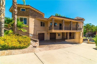 Canyon Lake Single Family Home For Sale: 29710 Buggywhip Court