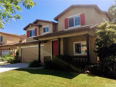 Murrieta Single Family Home For Sale: 29081 Hydrangea Street