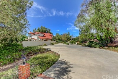 Temecula Single Family Home For Sale: 40885 Via Champagne