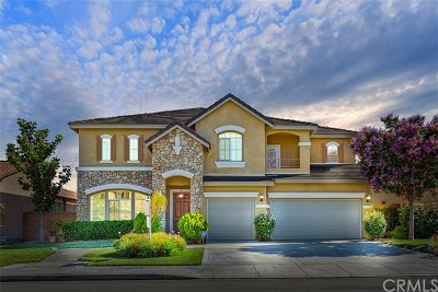 Temecula Single Family Home For Sale: 33581 Pebble Brook Circle