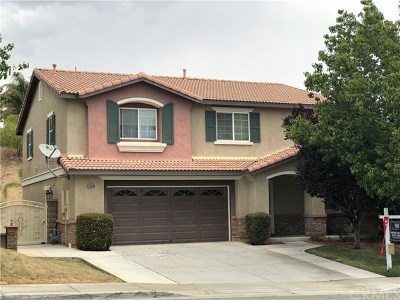 Lake Elsinore Single Family Home For Sale: 53208 Darlington Street