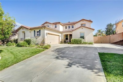 Murrieta Single Family Home For Sale: 29201 Derby Drive