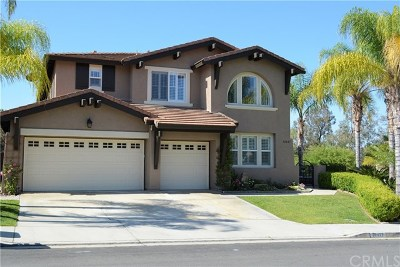 Temecula Single Family Home For Sale: 32427 Rosa Court