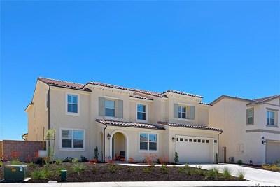 Murrieta Single Family Home For Sale: 30647 Aspen Glen Street