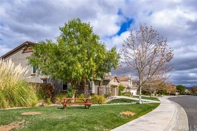 Wildomar Single Family Home For Sale: 33321 Chert Lane
