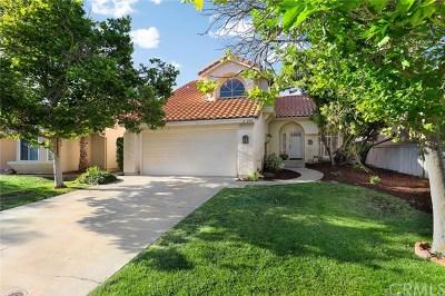 Temecula Single Family Home For Sale: 27480 Jon Christian Place