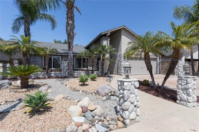 Mission Viejo Single Family Home For Sale: 23745 Via Astorga