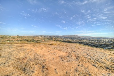 Temecula Residential Lots & Land For Sale: 38910 Calle Segovia