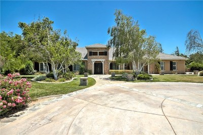 Murrieta Single Family Home For Sale: 25827 Bay Meadows