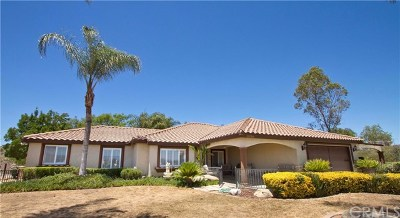 Temecula Single Family Home For Sale: 38798 Green Meadow Road