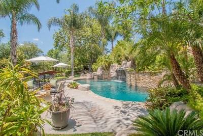 Temecula Single Family Home For Sale: 29855 La Corona Court