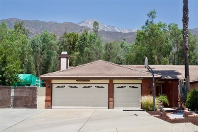 Rancho Cucamonga Single Family Home For Sale: 10098 Iron Mountain