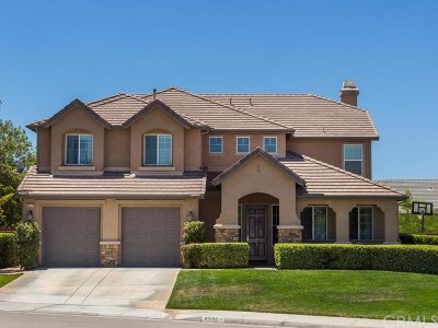 Temecula Single Family Home For Sale: 45157 Saddleback Court