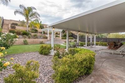 Murrieta Single Family Home For Sale: 23491 Karen Place