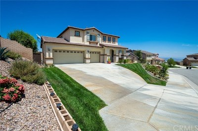 Lake Elsinore Single Family Home For Sale: 29422 Canyon Valley Drive