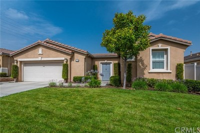 Beaumont Single Family Home For Sale: 289 Bartram Trl