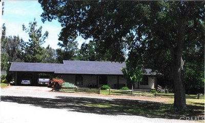 Red Bluff Single Family Home For Sale: 22360 Renelli Road