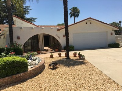 Canyon Lake Single Family Home For Sale: 22343 Boating Way