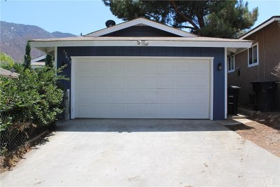 Lake Elsinore Single Family Home For Sale: 17611 Mackay Avenue