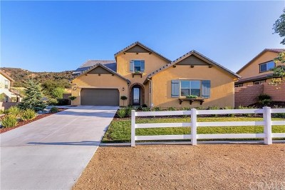 Corona Single Family Home For Sale: 26261 Santiago Canyon Road