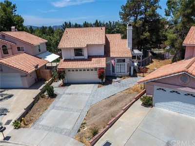 Temecula Single Family Home For Sale: 27005 Ravenhill Court