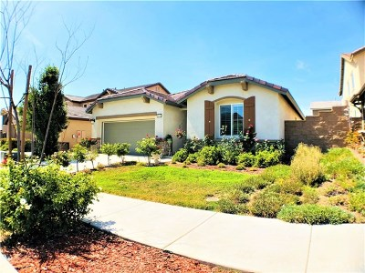 Murrieta Single Family Home For Sale: 31619 Desert Holly Place