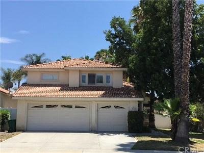 Murrieta Single Family Home For Sale: 41432 Patri Circle