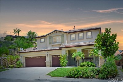 Lake Elsinore Single Family Home For Sale: 29392 Cascade Court