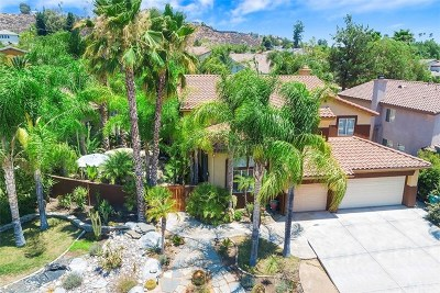 Murrieta Single Family Home For Sale: 23402 Mount Ashland Court