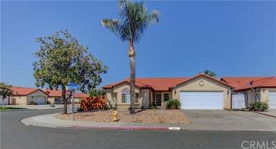 Hemet Single Family Home For Sale: 1367 Zirconia Street