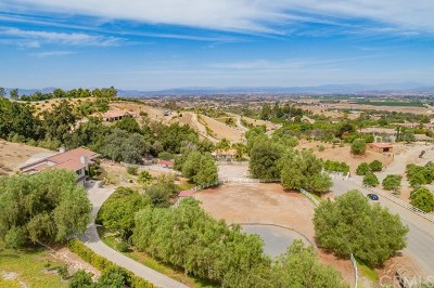Temecula Single Family Home For Sale: 41233 Chaparral Drive