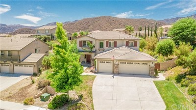 Lake Elsinore Single Family Home For Sale: 29249 Gateway Drive