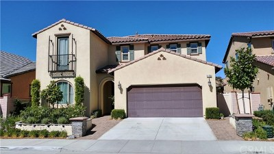 Temecula Single Family Home For Sale: 31760 Sweetwater Circle