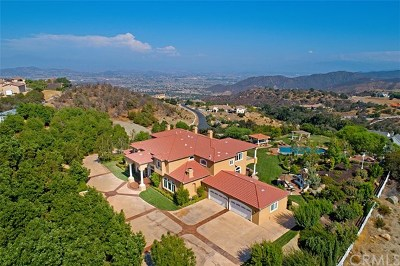 Beaumont, Corona, Hemet, Lake Elsinore, Menifee, Moreno Valley, Murrieta, Perris, Riverside, San Jacinto, Temecula Single Family Home For Sale: 21375 Hodan Hill Court