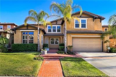 Murrieta Single Family Home For Sale: 29283 Gandolf Court