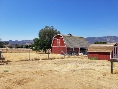Wildomar Single Family Home For Sale: 21485 Bundy Canyon Road