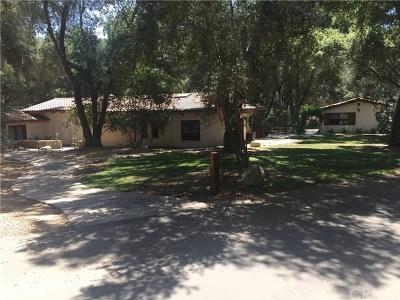 Temecula Single Family Home For Sale: 25075 Via Escondido