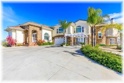 Temecula Single Family Home For Sale: 41725 Avenida Ortega