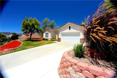 Wildomar Single Family Home For Sale: 32171 White Spruce Court
