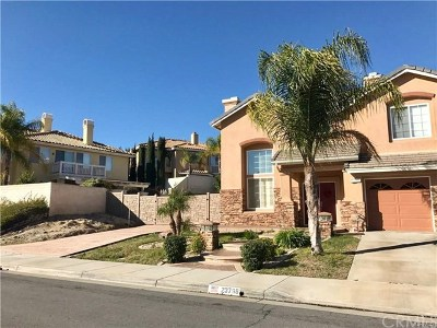 Murrieta Single Family Home For Sale: 23798 Via Segovia